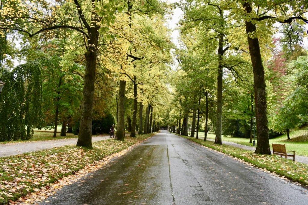 Street in baden Baden park