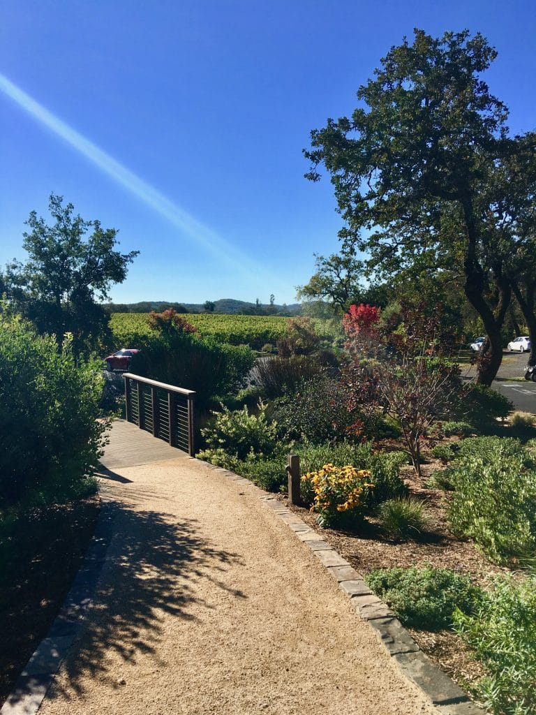 Pathway to winery at Lassiter