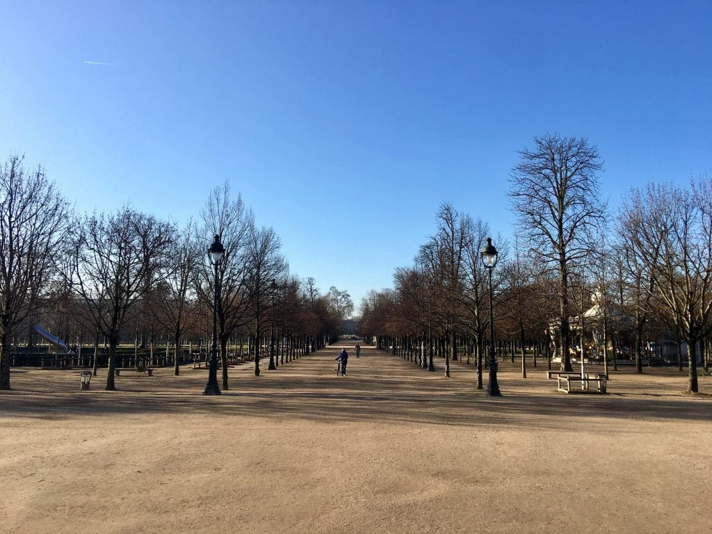 Jardin des Tuileries in February