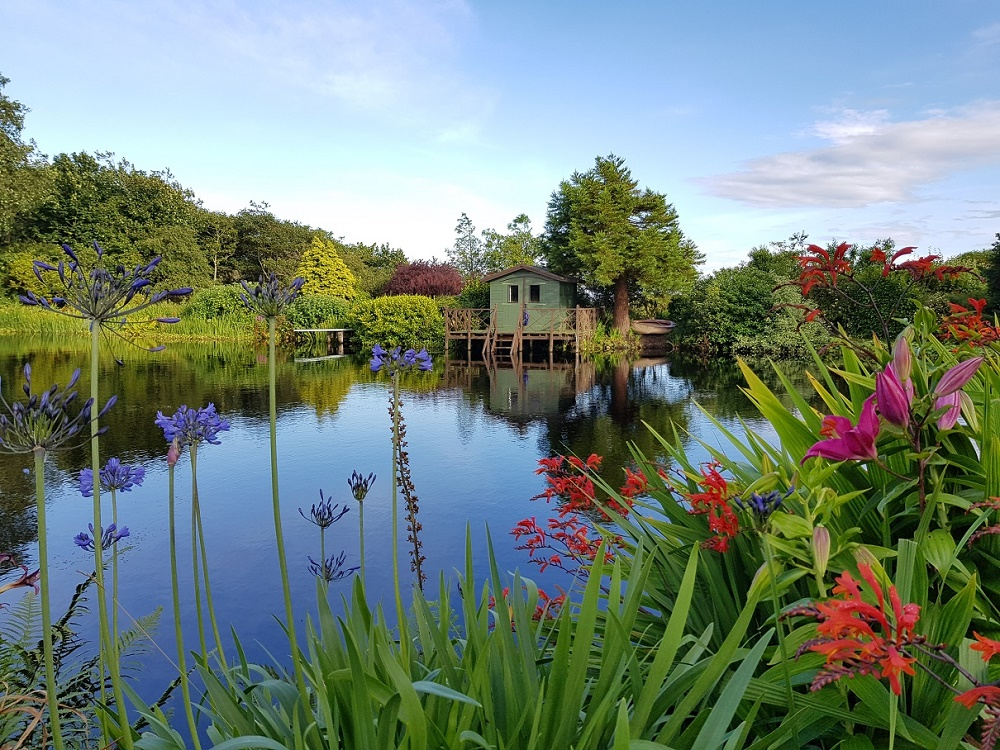 Beautiful flowers and gardens around the world: Glenwhan Gardens, Rhins of Galloway Scotland