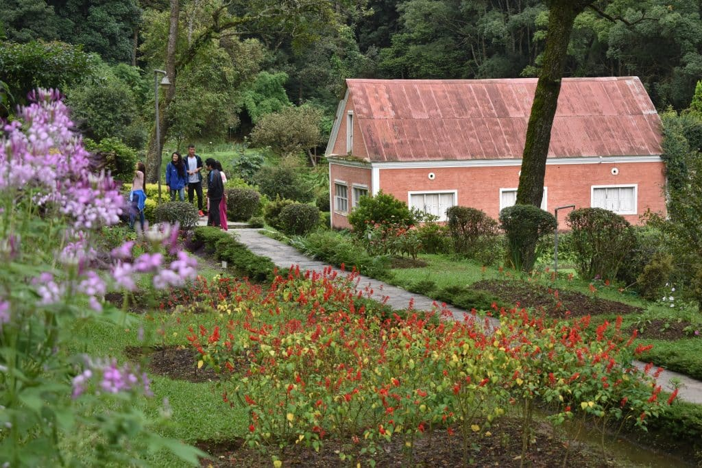 Beautiful flowers and gardens around the world: Nepal Godavari Botanical Garden