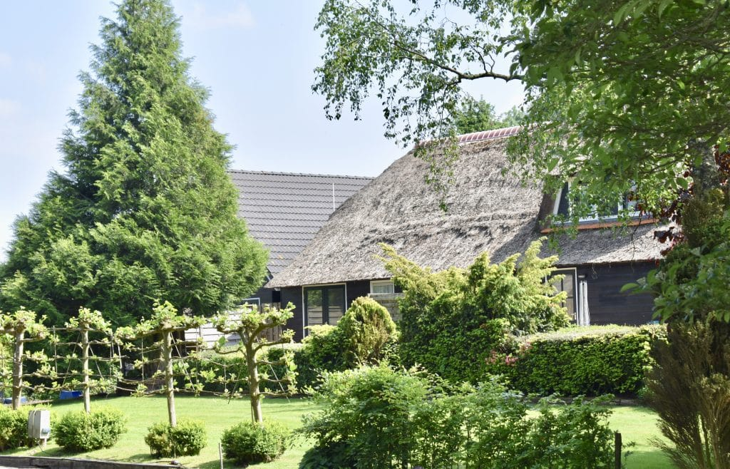 Brown Thatched roof home with trees in Giethoorn