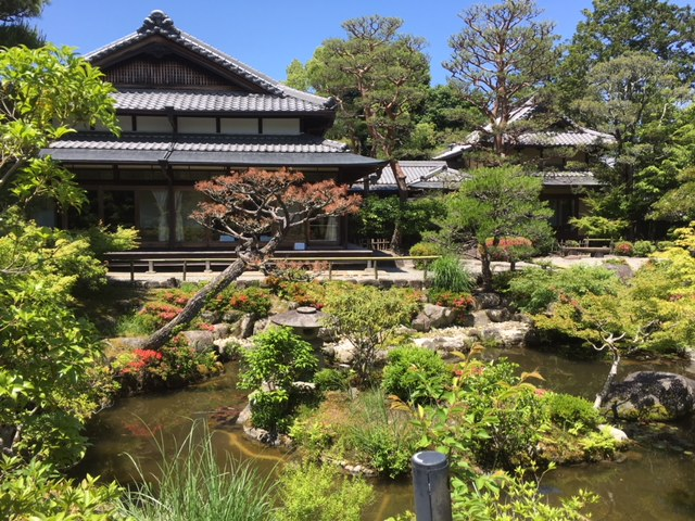 Beautiful flowers and gardens around the world: Yoshikien Garden in Nara Japan