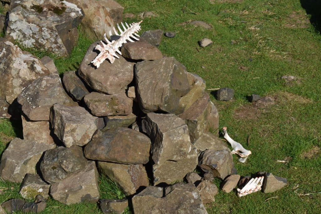 Stone structure with bones at the Fairy Glen of Uig, Isle of Skye Scotland