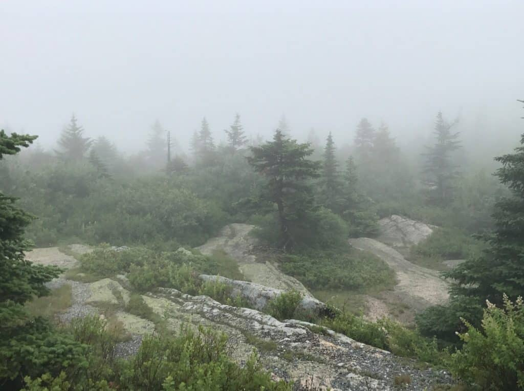 Travel By A Sherrie Affair's Thursday Travel Blogger: DQ Family Travel- My Favorite Destination is Acadia National Park
